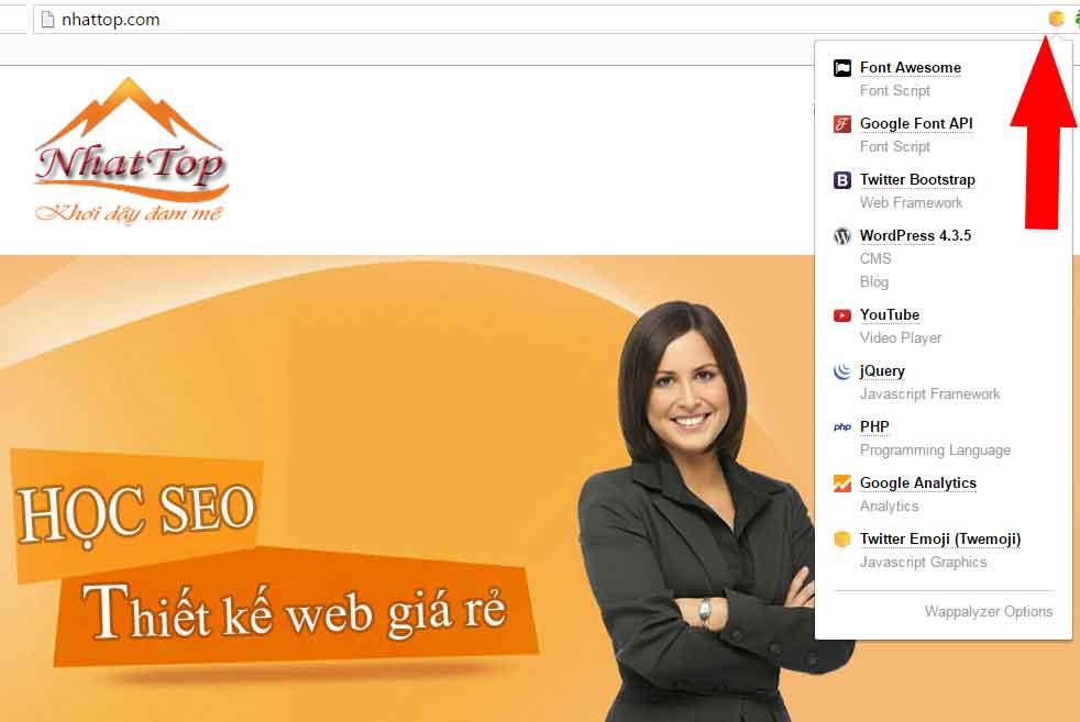 Kiểm tra ngôn ngữ lập trình website