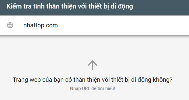 Nhập website cần kiểm tra tương thích với thiết bị di động